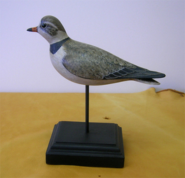 Gibian Piping Plover Decoy